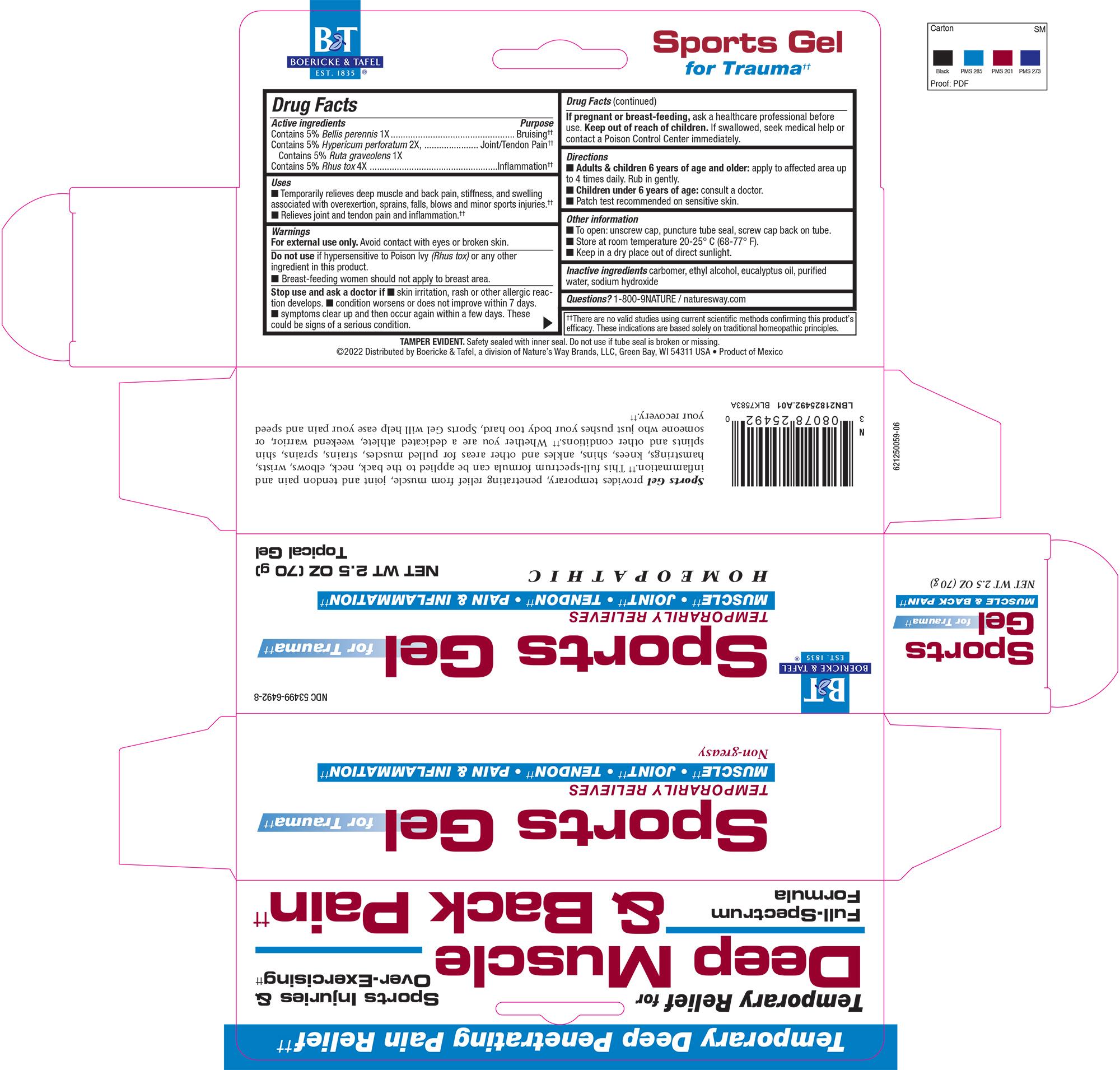 LBN21825492.A01 Sports Gel.jpg