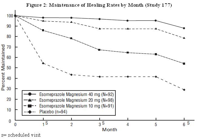 Figure 2: Maintenance of Healing Rates by Month (Study 177)