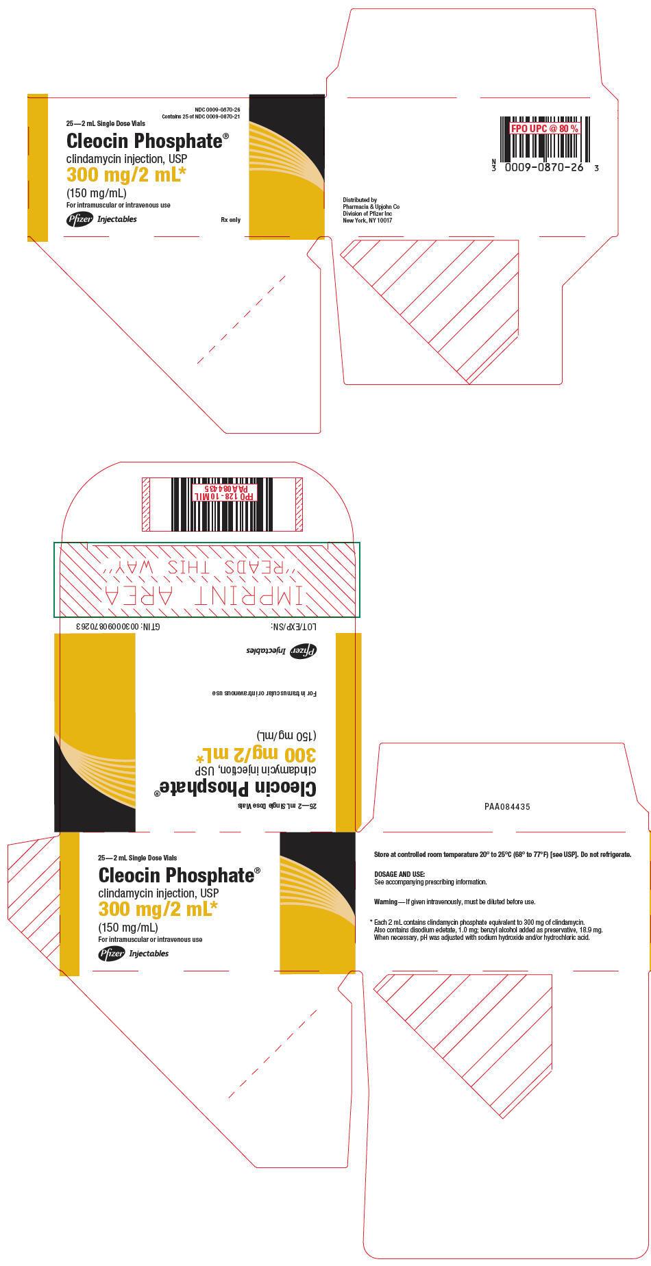 PRINCIPAL DISPLAY PANEL - 300 mg/2 mL Vial Carton