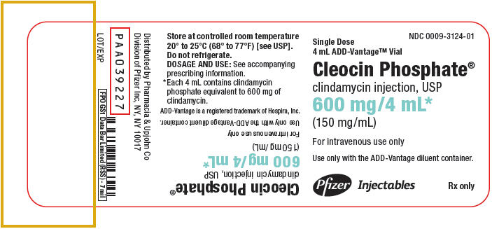 PRINCIPAL DISPLAY PANEL - 600 mg/4 mL Vial Label