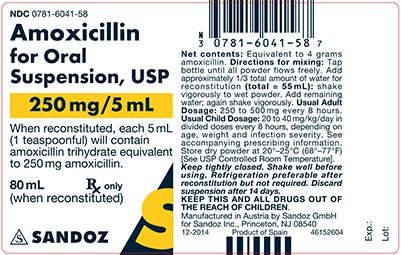 Amoxicillin 250 mg/5 mL Oral Suspension Label