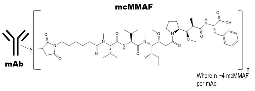Belantamab mafodotin-blmf chemical structure