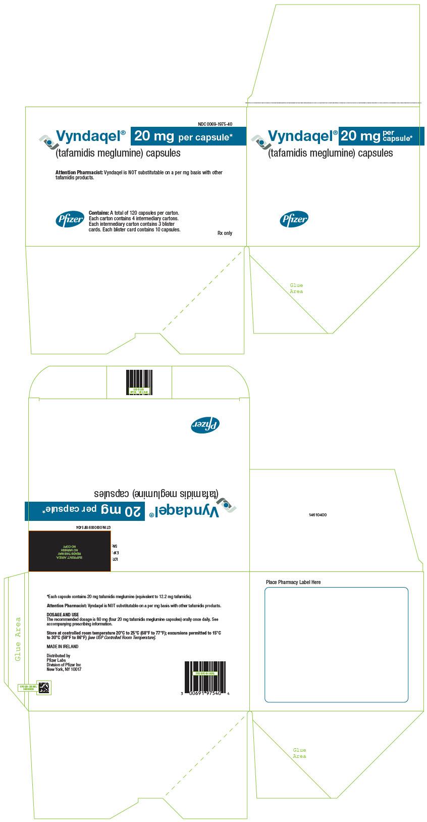 PRINCIPAL DISPLAY PANEL - 20 mg Capsule Blister Card Carton Carton