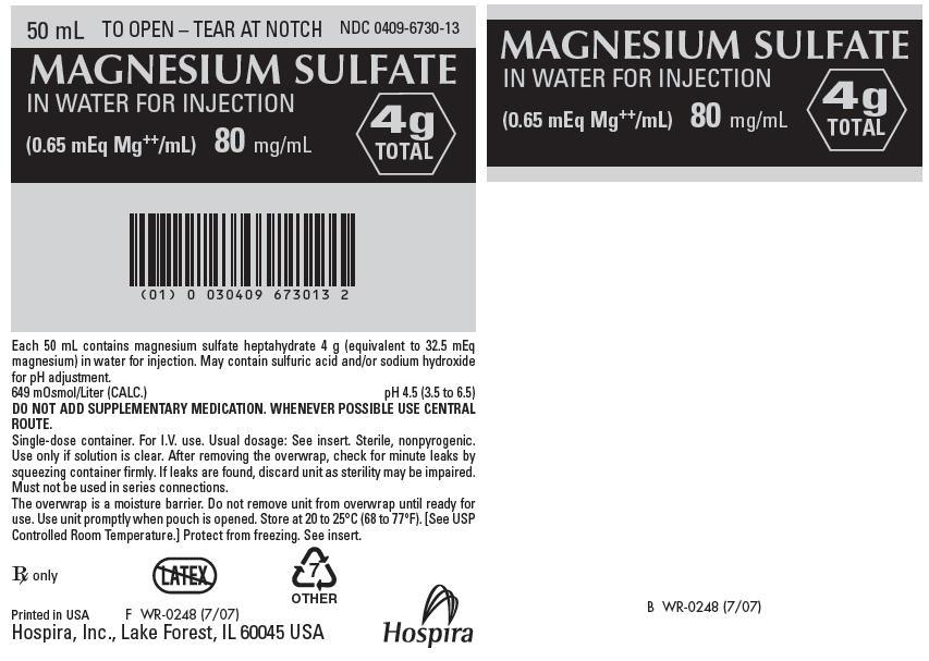 PRINCIPAL DISPLAY PANEL - 80 mg/mL Bag Pouch Label