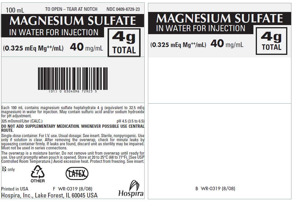 PRINCIPAL DISPLAY PANEL - 40 mg/mL Bag Pouch Label - 100 mL