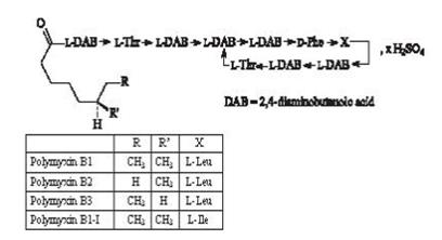 The structural formula for polymyxin B sulfate