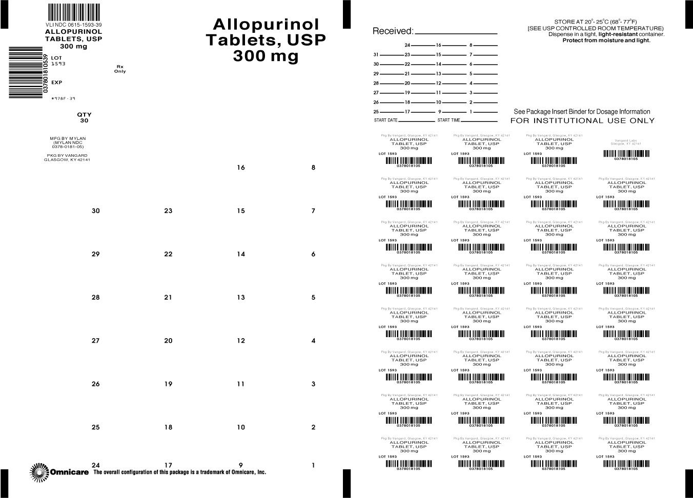 Principal Display Panel-Allopurinol 300mg