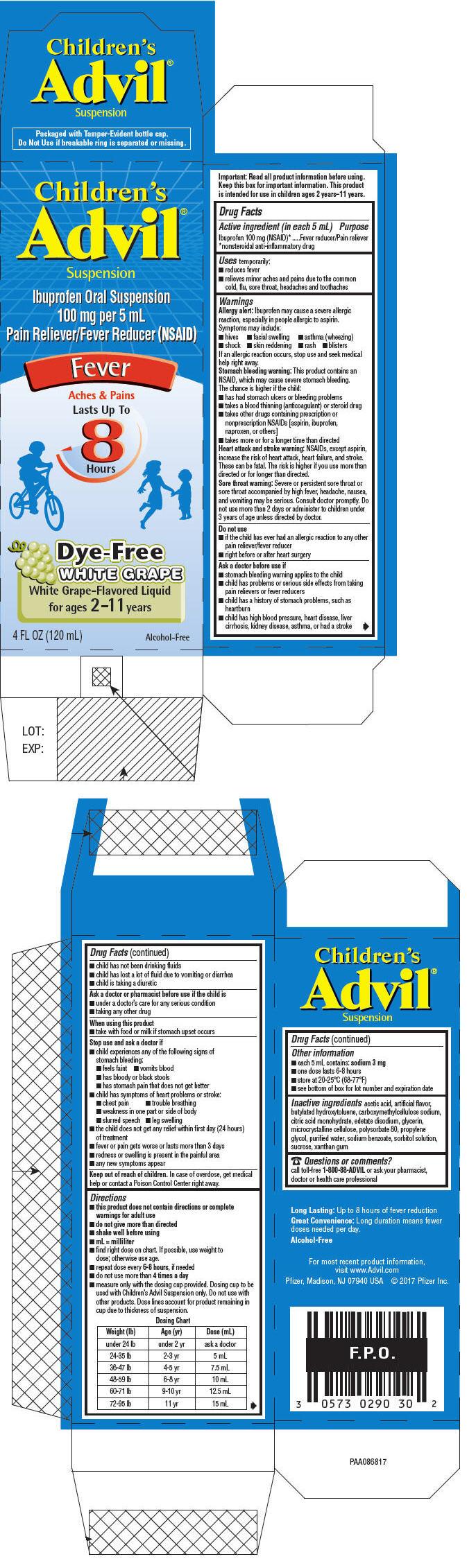 PRINCIPAL DISPLAY PANEL - 120 mL Bottle Carton - White Grape-Flavored