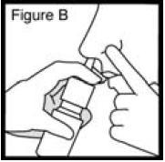 Budesonide-FigB