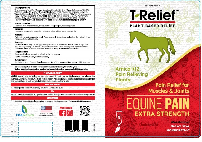 T-Relief Equine Pain Extra Strength.jpg