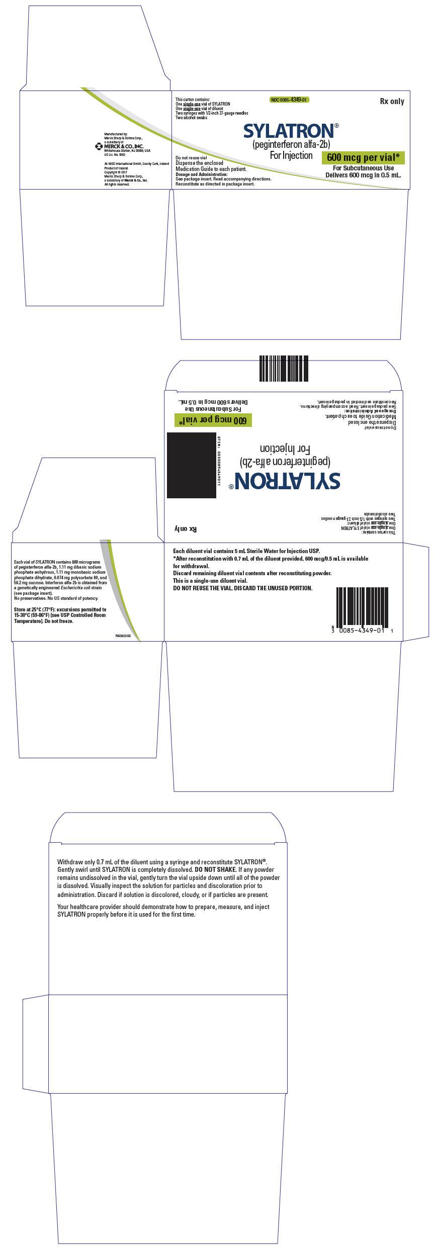 PRINCIPAL DISPLAY PANEL - Kit Carton - 600 mcg