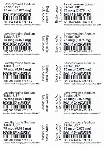 75 mcg Levothyroxine Sodium Tablet Blister