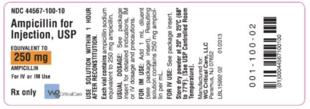 Ampicillin 250 mg vial label
