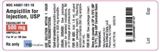 Ampicillin for Injection, USP 500 mg label image