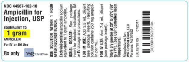 Ampicillin for Injection, USP 1 g label image