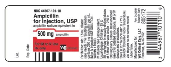 Ampicillin 500 mg vial label