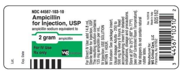 2 gram Ampicilln vial label