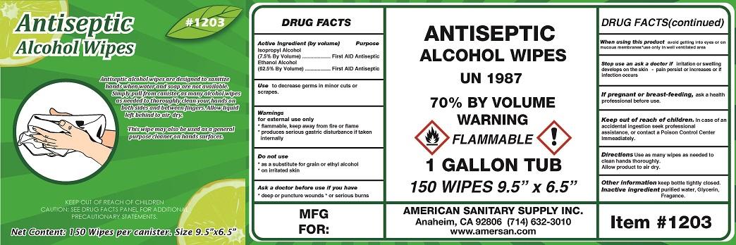 01b LBL_1203 Antiseptic Wipes 4x12 bis
