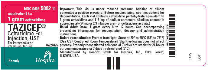 PRINCIPAL DISPLAY PANEL - 1 gram Vial Label