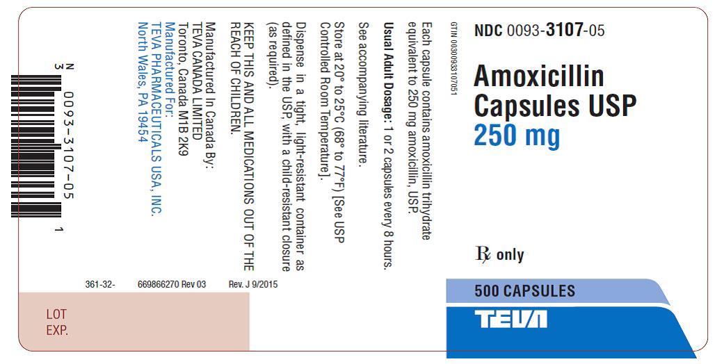 Amoxicillin Capsules USP 250 mg 500s Label