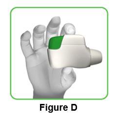 Figure_D_IFU