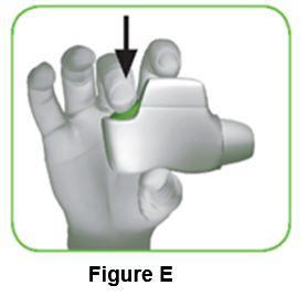 Figure_E_IFU