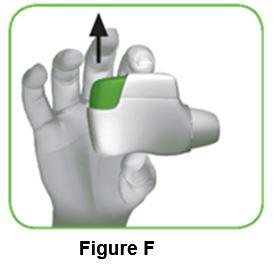 Figure_F_IFU