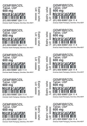 600 mg Gemfibrozil Tablet Blister
