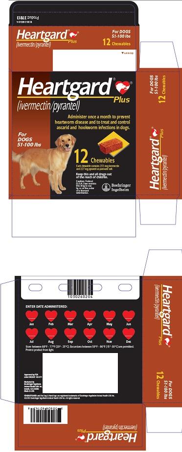 PRINCIPAL DISPLAY PANEL - 12 Tablet Carton (For Dogs 51-100 lbs)