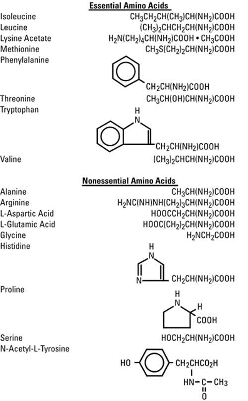 structural formula amino acids