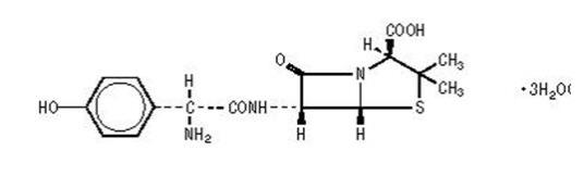 The structural formula for Amoxicillin.