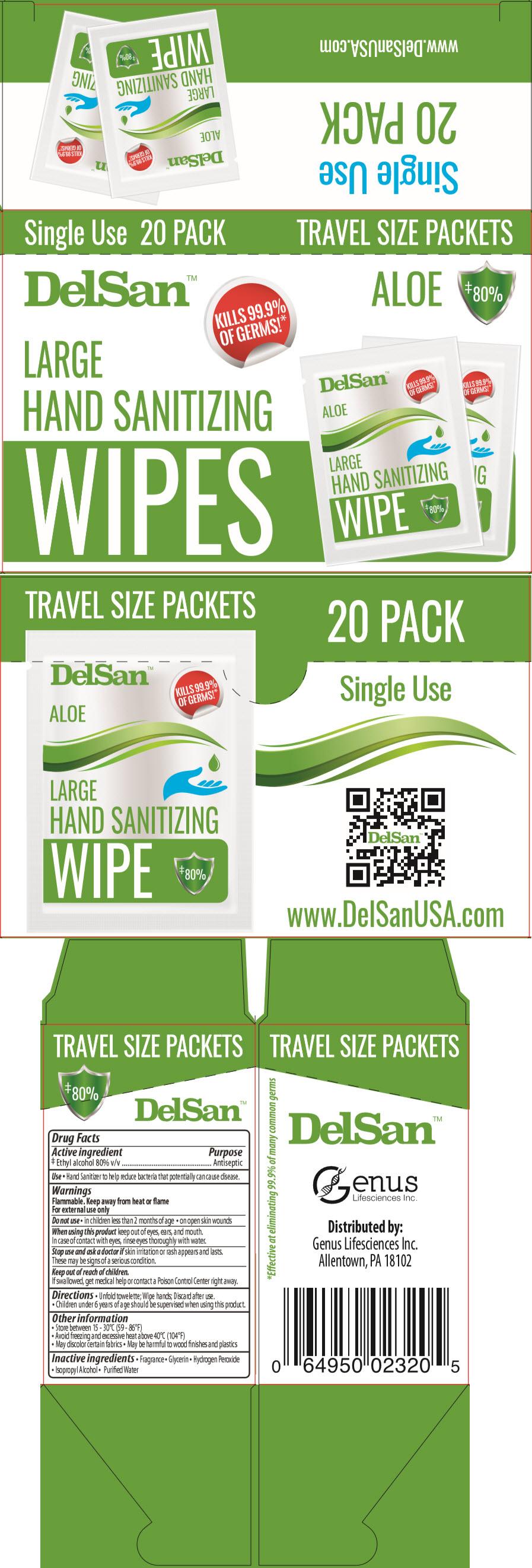 PRINCIPAL DISPLAY PANEL - 20 Packet Carton - Aloe