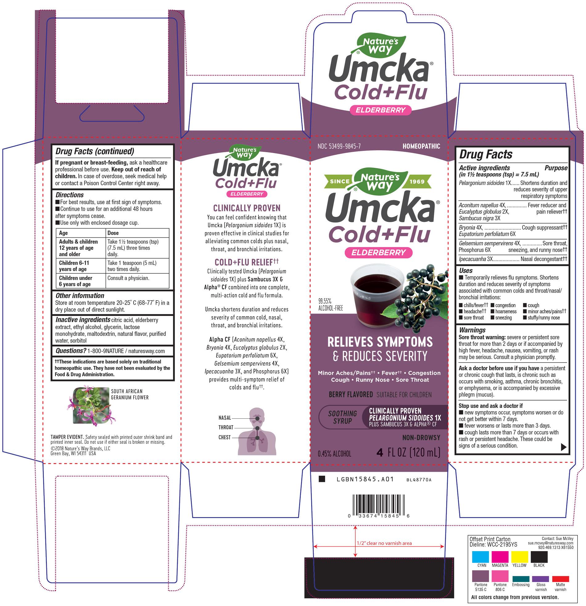 15845-Umcka CF Elderberry-Syrup-A01.jpg