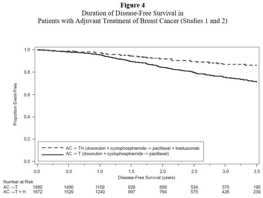 Figure 4 Duration of Disease-Free Survival in Patients with Adjuvant Treatment of Breast Cancer (Studies 1 and 2)