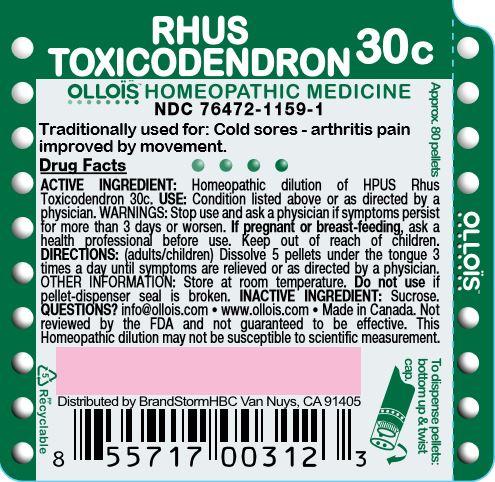 Rhus Toxicodendron 30c
