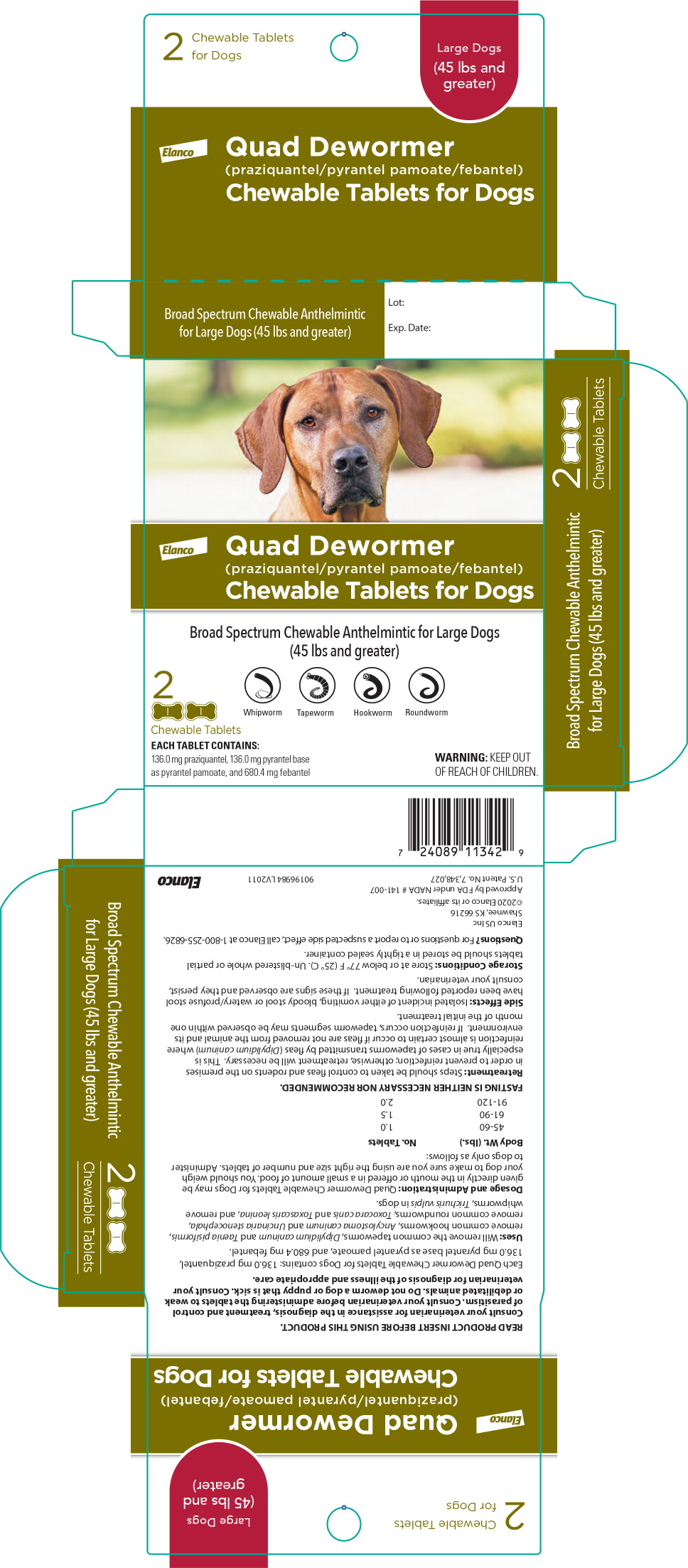Principal Display Panel – Large Dogs Carton Label