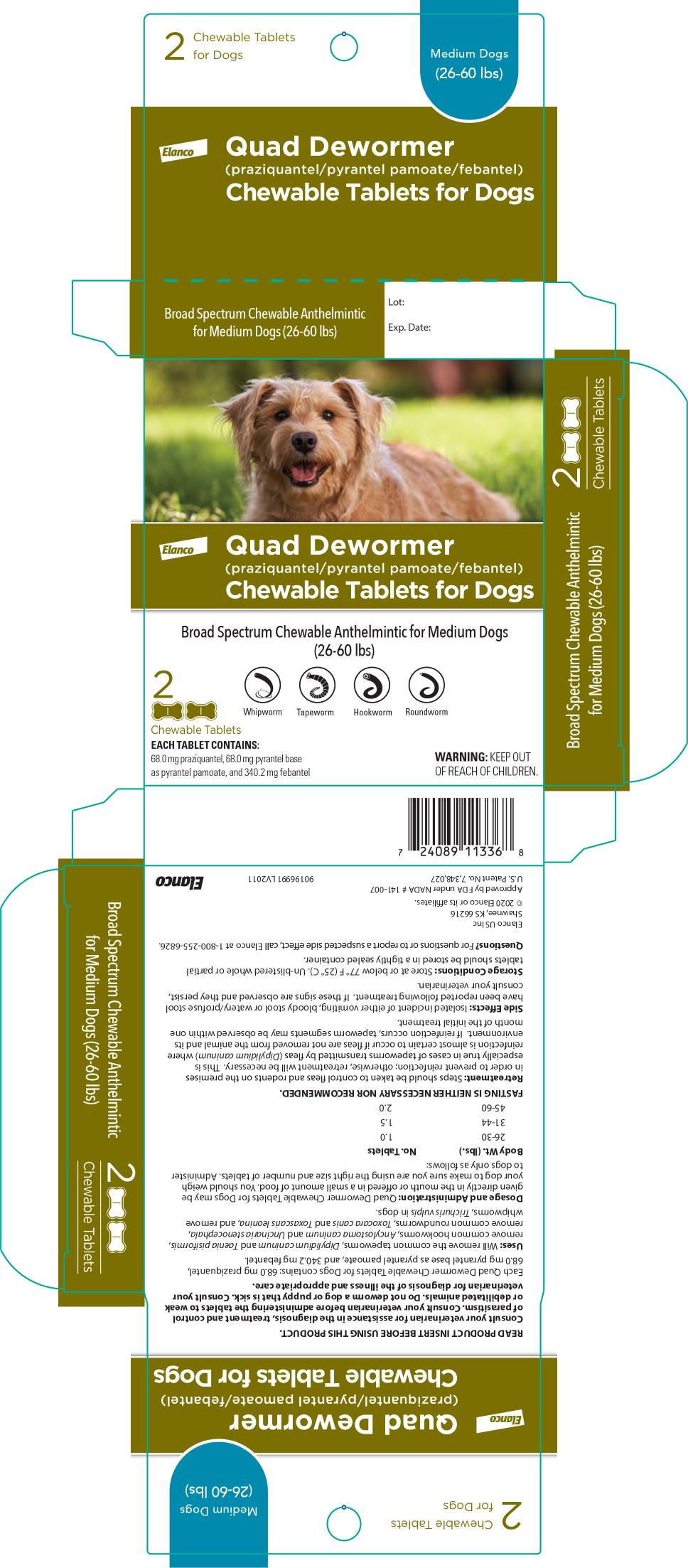 Principal Display Panel – Medium Dogs Carton Label