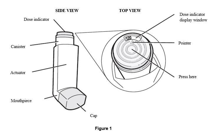 Figure 1 - cartridge
