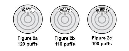 Figure 2a, 2b, 2c - dose indicators