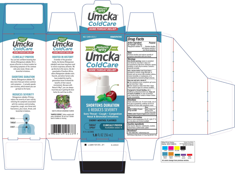 10533-Umcka Throat Spray_1.jpg