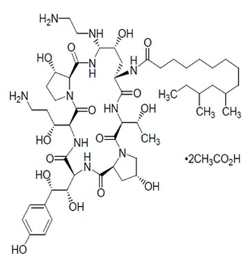 structure-caspofungin