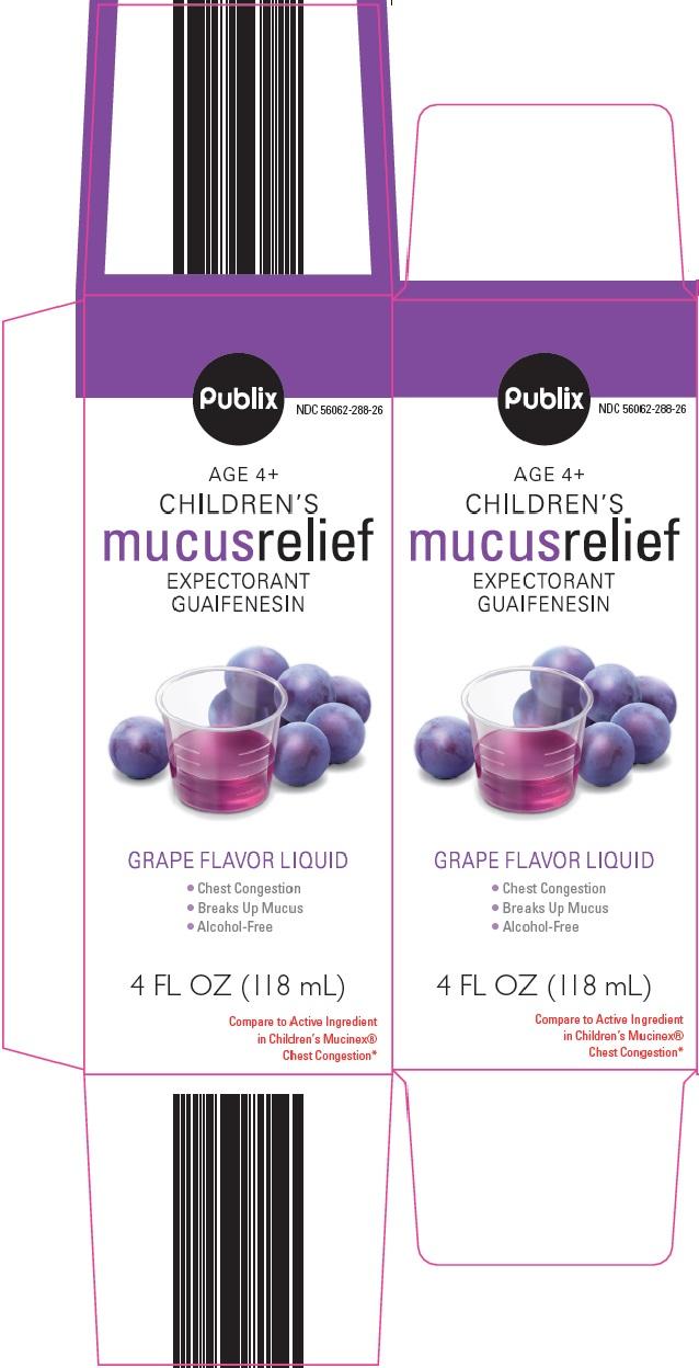 Publix Children's Mucus Relief image 1