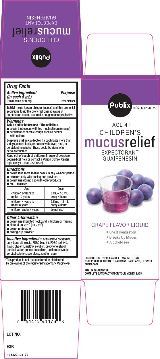 Publix Children's Mucus Relief image 2