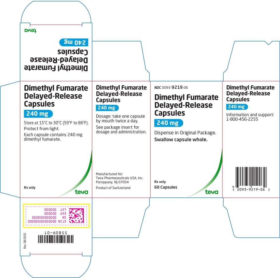 Principal Display Panel – 240 mg Carton Label