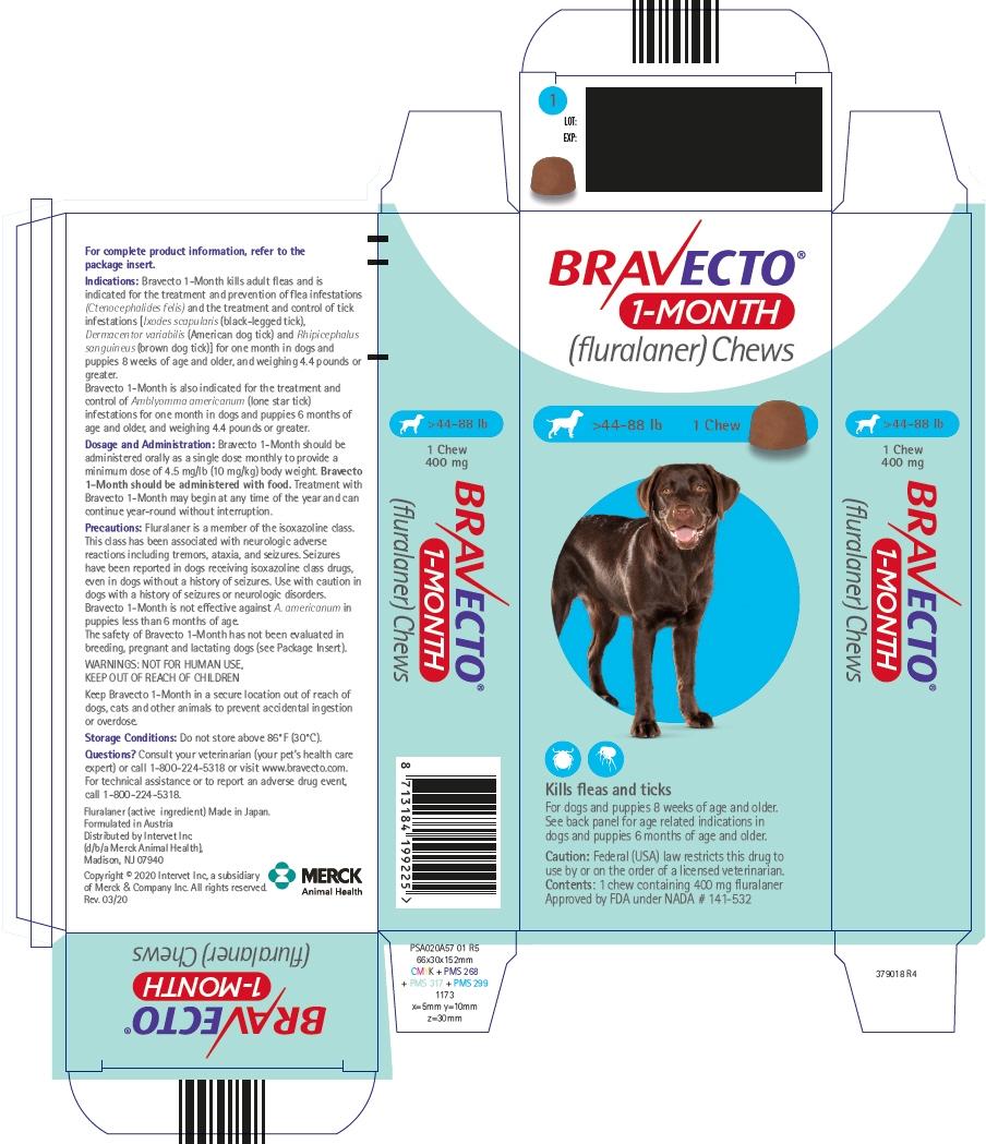 PRINCIPAL DISPLAY PANEL - 400 mg Chew Blister Pack Carton