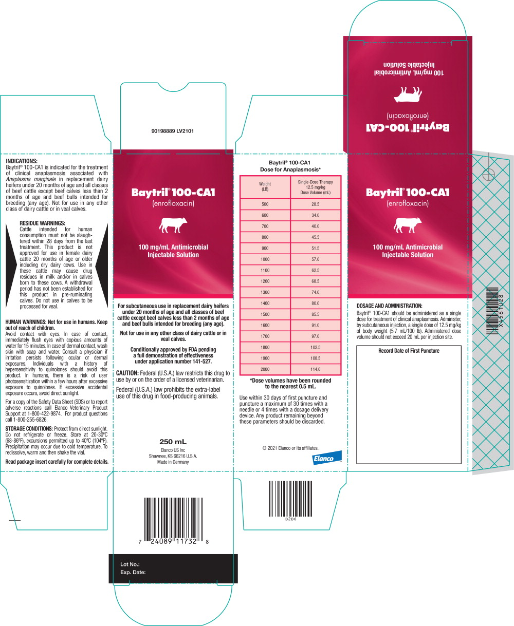 Principal Display Panel - 250 mL Carton Label
