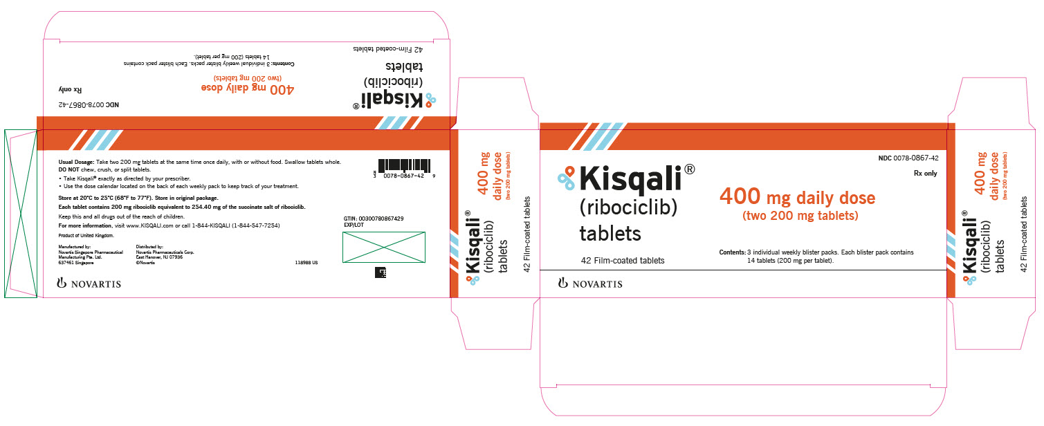 PRINCIPAL DISPLAY PANEL – PACKAGE LABEL – 400 mg daily dose