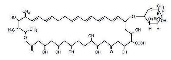 nystatin_structural_formula