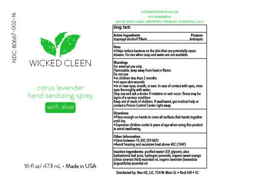 Wicked Cleen Citrus Lavender Hand Sanitizer- 16oz bottle