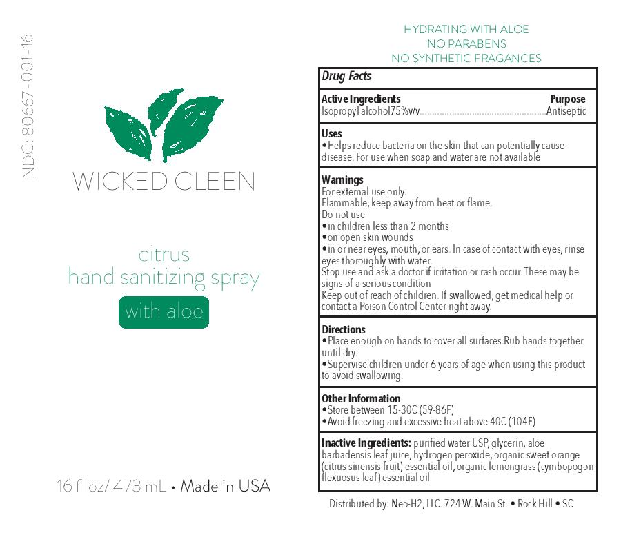Wicked Cleen 16 oz